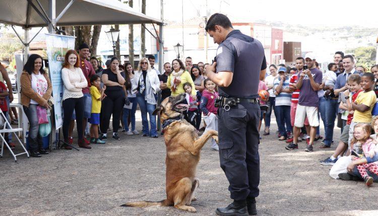 Terceira Edição do Curso de Obediência Básica para Cães conta com quase 100 participantes